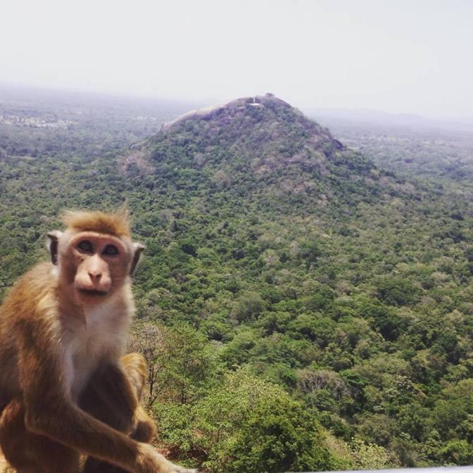 In Awe of Sri Lanka